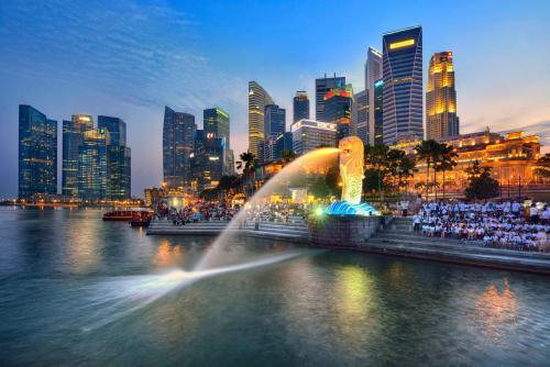 新加坡基金会注册